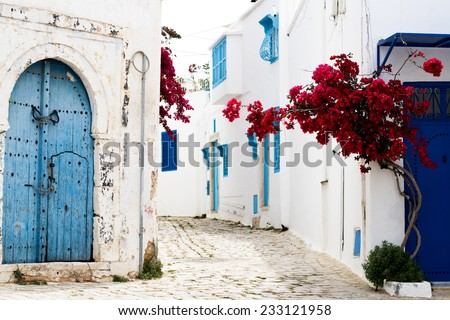 Blue doors, window and white wall of building in Sidi Bou Said - stock photo