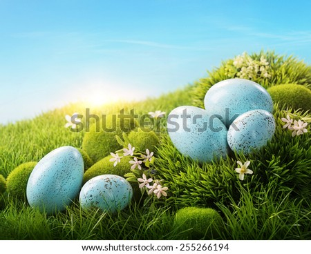 Blue easter eggs on green grass - stock photo
