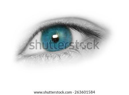 Blue eye isolated on white background - stock photo