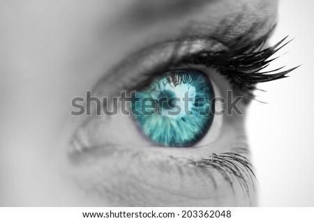 Blue eye on grey face on white background - stock photo