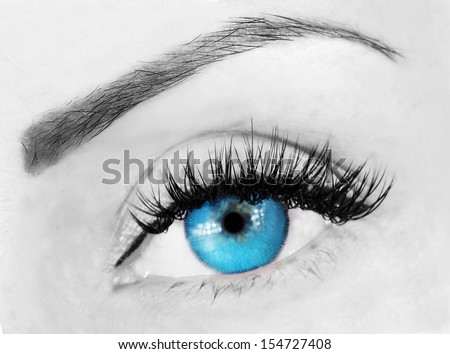 blue eye with bushy lashes and brow close up picture