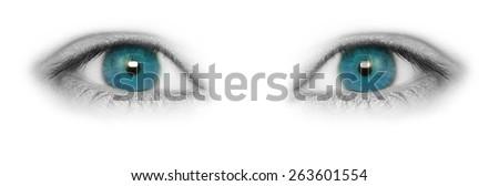 Blue eyes isolated on white background - stock photo