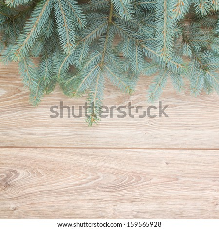 blue  fir tree border on wooden background - stock photo