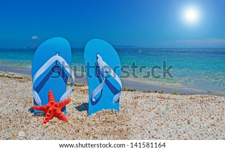 blue flip flops and red starfish under a bright sun - stock photo