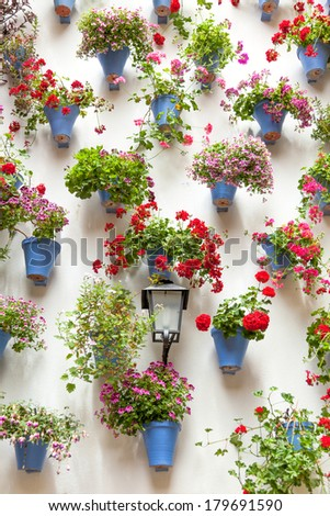 Blue Flowerpots and Red Flowers on a white wall with vintage lantern. European town, Spain - stock photo