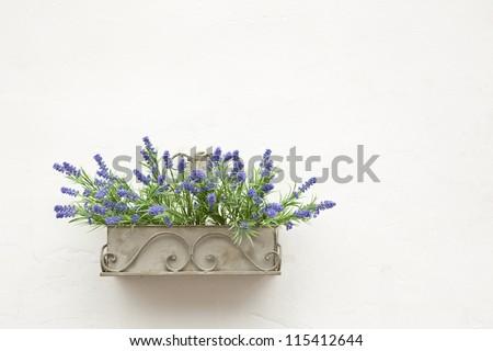 Blue flowers in a metallic pot - stock photo
