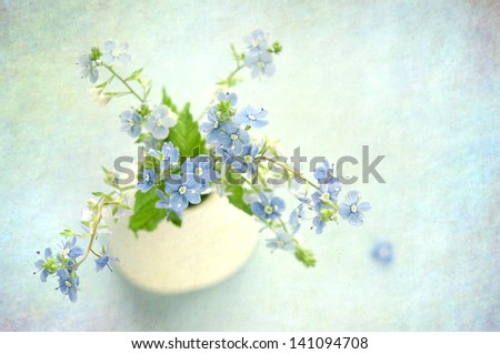 Blue flowers in flowerpot on grunge abstract background. - stock photo