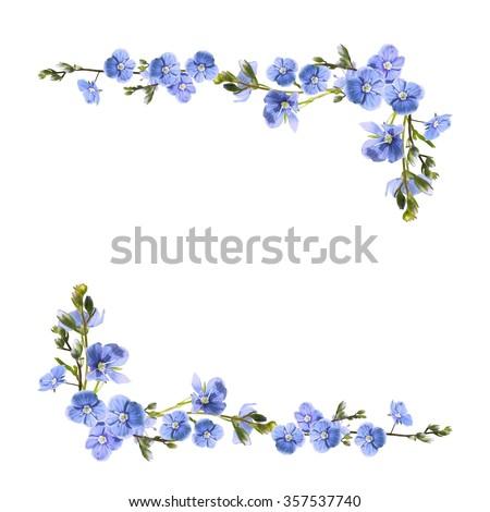 blue flowers isolated on white background - stock photo