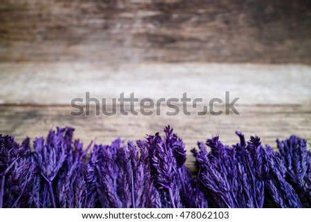 blue flowers on a brown wooden table