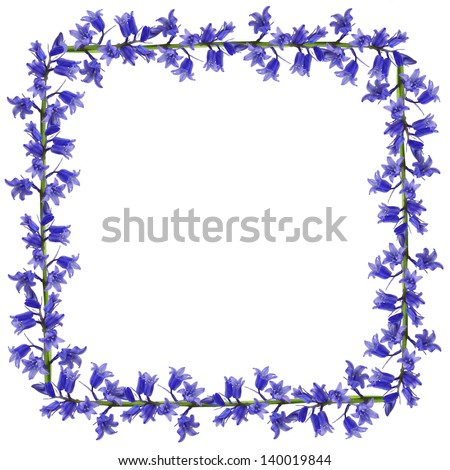 Blue flowers square frame on the white background