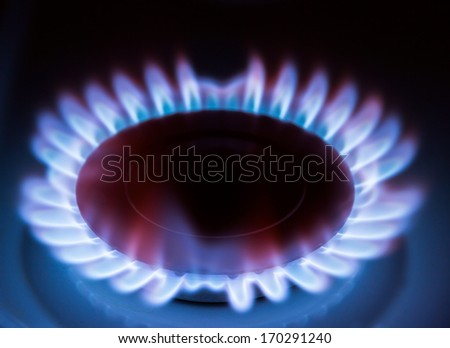 Blue gas flame on hob - stock photo