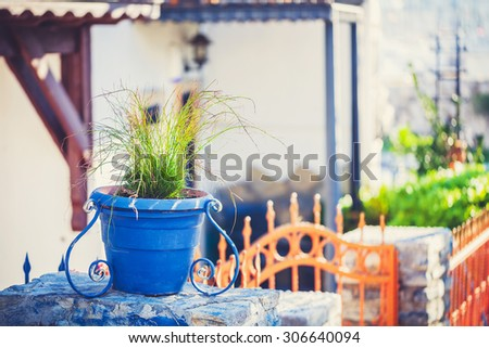 Blue glazed terracotta plant pots filled with annual flowers used as home decoration. - stock photo