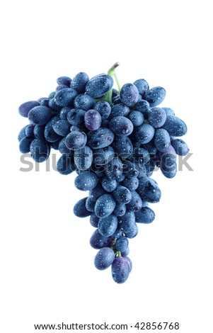 Blue grape cluster, white background