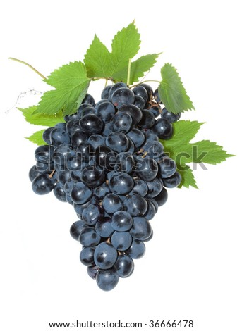 blue grape with leafs on white background