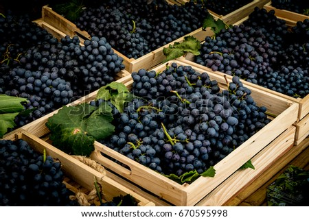 Blue Grapes in brown wood box