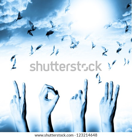 blue hand with new year 2013 abstract with doves flying on blue sky and cloud background - stock photo