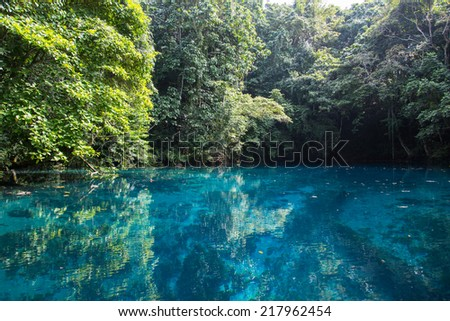 Blue Hole, Vanuatu - stock photo
