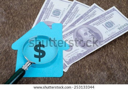 Blue home sign with magnifying glass and money: Real Estate Concept, Dollar sign - stock photo