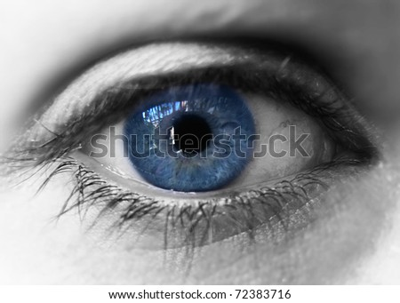 Blue iris eye over black and white. Closeup - stock photo