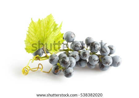 Blue Isabella grapes bunch on white background