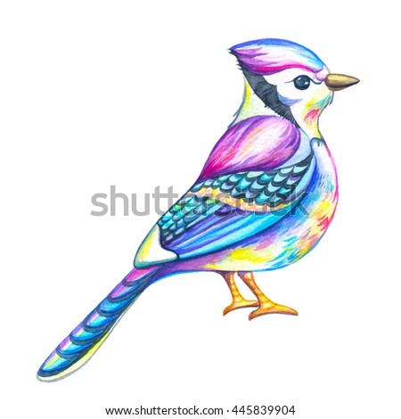 Blue Jay sitting on branch with head slightly cocked, white background. Watercolor illustration. Animal illustration. - stock photo
