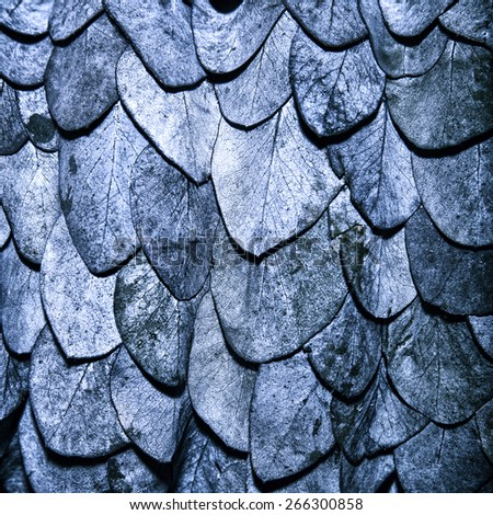 Blue leaves background in the form of scales of a snake - stock photo