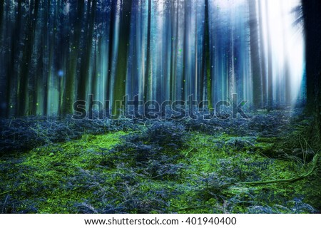 Blue magic fairytale forest with mysterious lights - stock photo