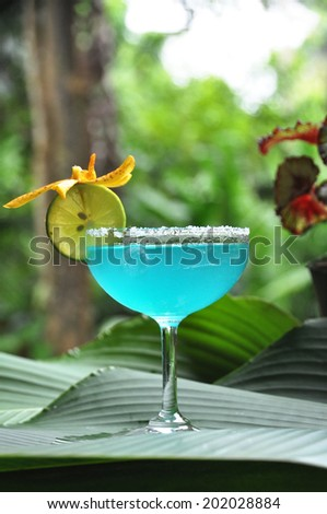 Blue margarita Cocktail - stock photo