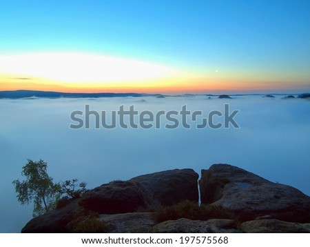 Blue morning, view over rock and fresh green trees to deep valley full of light mist. Dreamy spring landscape within daybreak after rainy night. Blue pink sky on horizon, the sunrise start in minute. - stock photo