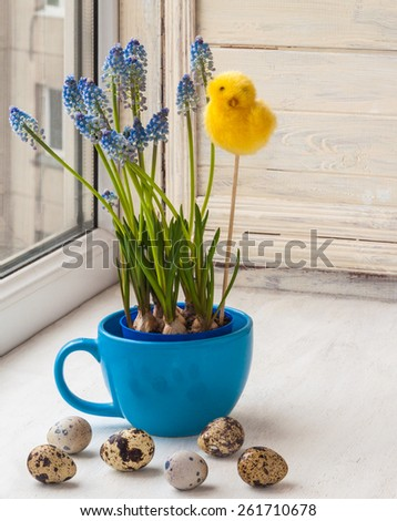 Blue muscari in blue cup and easter egg on the window - stock photo