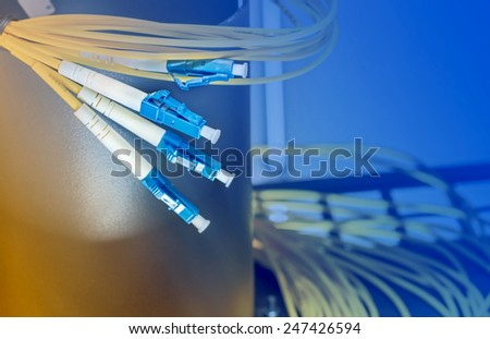 Blue optical fibre plugs in optic tray in server room
