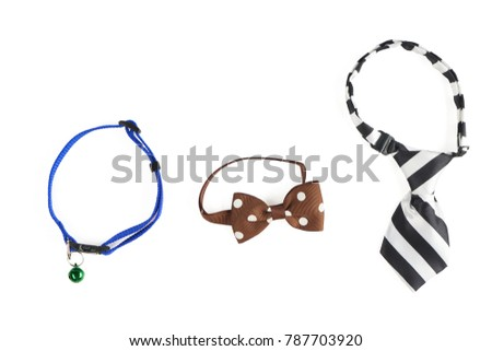 Blue pet's collar with blue bell, brown pet's butterfly with white polka dots, pet's tie in black and white stripes isolated on white background