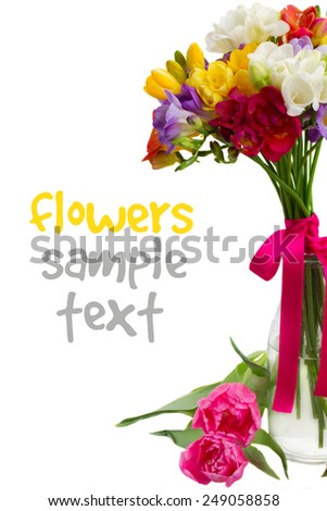 blue, pink  and yellow freesia   flowers in vase  close up  isolated on white background - stock photo