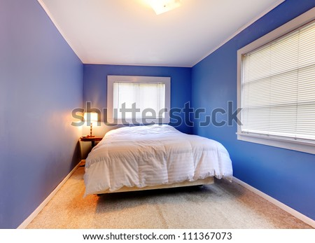 Blue And Purple Rooms blue and purple bedroom - home design ideas and pictures