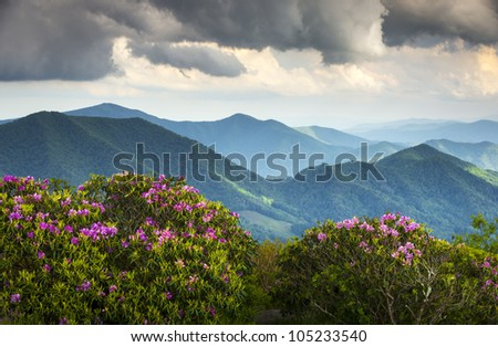 Blue Ridge Appalachian Mountain Peaks and Spring Rhododendron Flowers Blooming along the Appalachian Trail in Western NC - stock photo