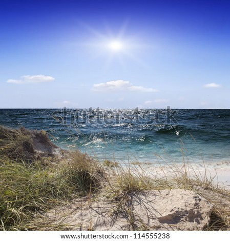 Blue sea beach and seagulls over waves - stock photo