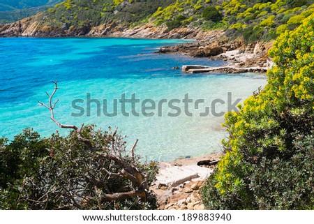 Blue sea in Asinara island in Sardinia, Italy - stock photo