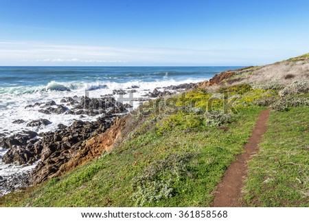 Blue sea & sky, and crashing surf, hiking on a hidden trail near the beach, at the Fiscalini Ranch Preserve on the Big Sur coast, California Central Coast, near Cambria CA. - stock photo