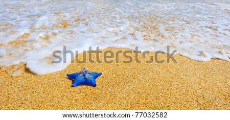 Blue sea star at the sand beach against the wave - stock photo
