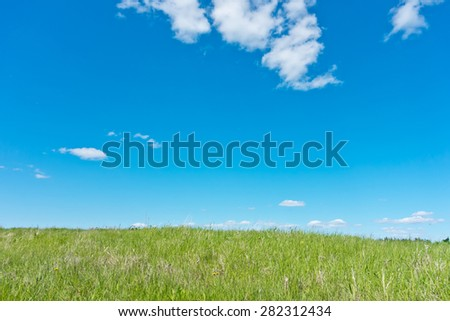 blue sky and green field - stock photo