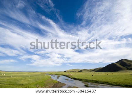 Blue sky and white clouds on the prairie