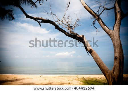 blue sky background with tiny clouds sea
