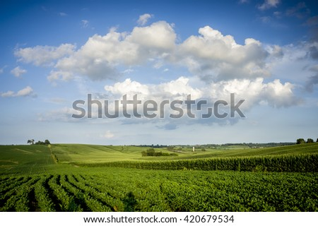 Blue Sky, Green Field and Clouds