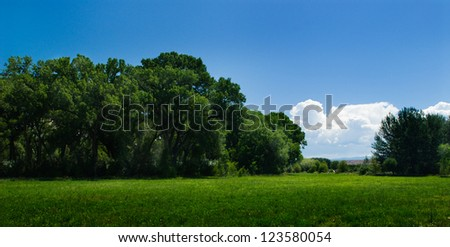 Blue sky, lush green field, and forest - stock photo