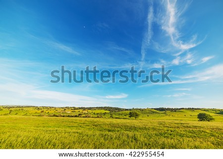 blue sky over a green field in the springtime, Italy - stock photo