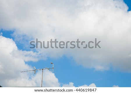 blue sky with cloud, concept of hope, new start, Fresh, Dove hold the antenna