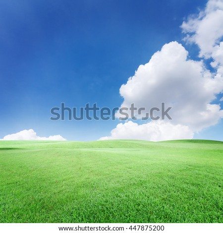 blue sky with clouds and grass