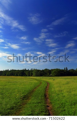 Blue sky with clouds over green field on a summer morning