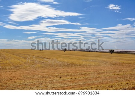 Blue sky with clouds over Lake Tyrrell and arable land after harvest near Sea Lake, Victoria, Australia