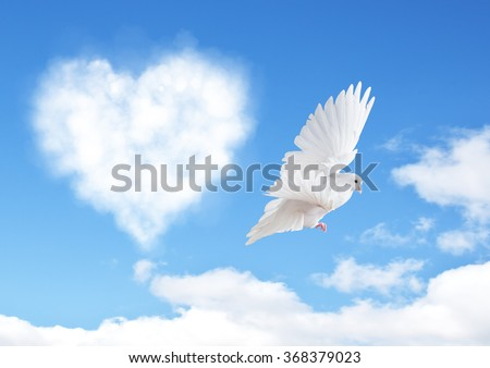 Blue sky with hearts shape clouds and dove. Love concept